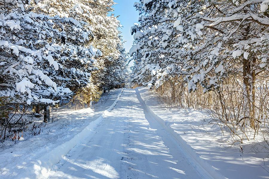 Winter Scenes Cherry Valley Ontario » Montreal Photographer-Kevin Denham